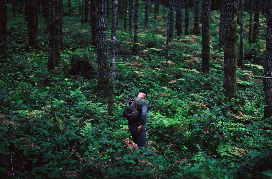 a person with a backpack walking in the woods.