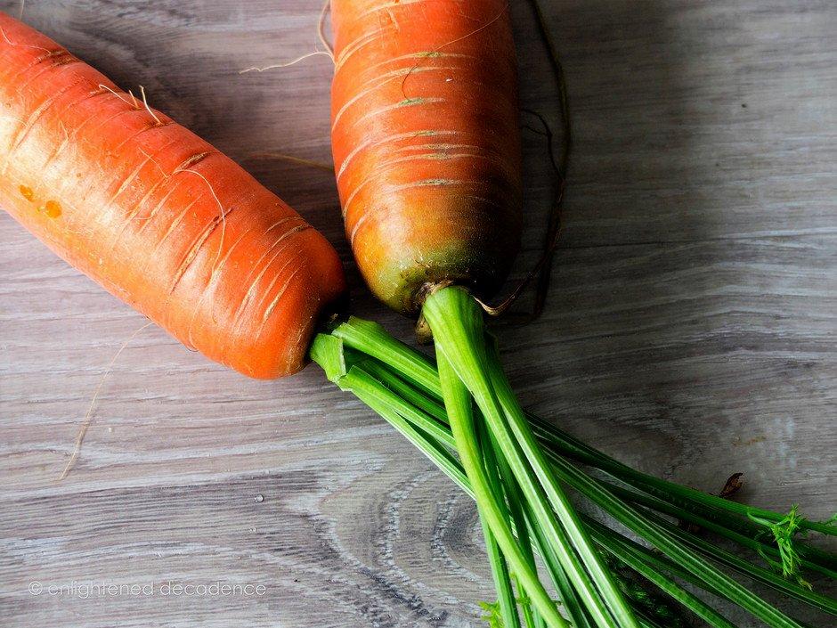 A closeup of carrot tops.